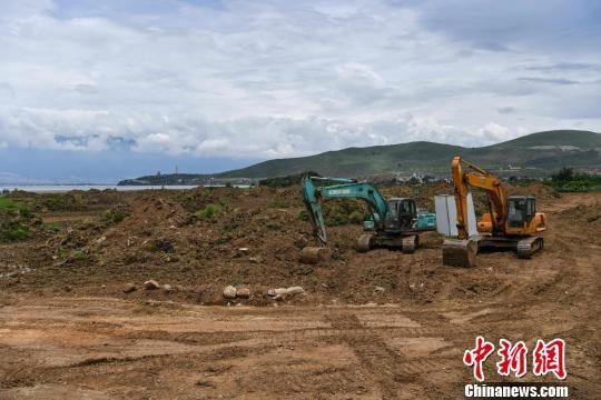 图为大理正在将洱海湖滨农田改造为湿地。 任东 摄