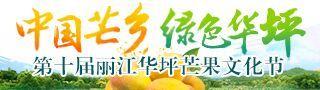 """""""2017中国芒乡 绿色华坪-第十届丽江华坪芒果文化节"""