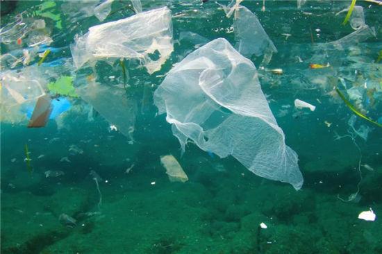 网络图 海洋垃圾