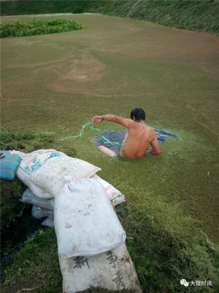 赵文跳进水塘堵漏
