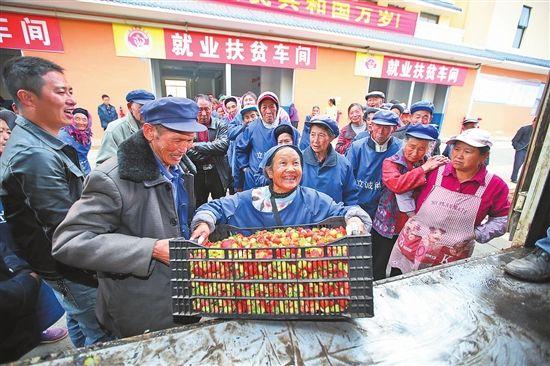 63岁的贫困户蔡党妹分拣完最后一篮草莓,就有了几十元的收入。