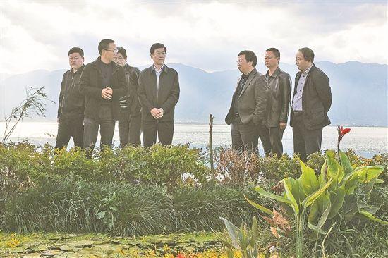 省生态环境厅领导调研洱海保护治理