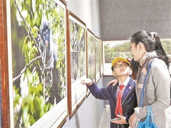 云南生物多样性图片暨生态环境漫画展