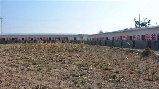 龙水村安置点对面农户每家一间的牲口圈