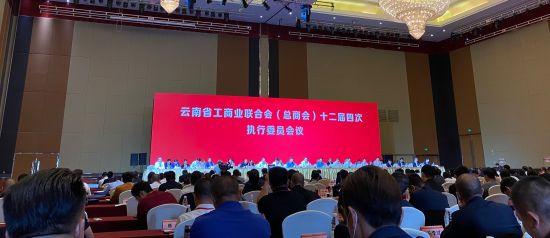云南2017上半年gdp_云南省2020上半年GDP同比增长0.5%增速列全国第13位