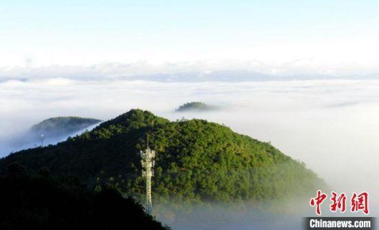 图为无量山风光。云南省林业和草原局提供