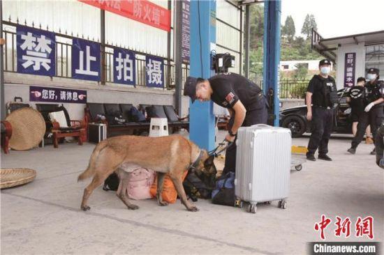 图为云南民警检查可疑物品。云南省公安厅供图