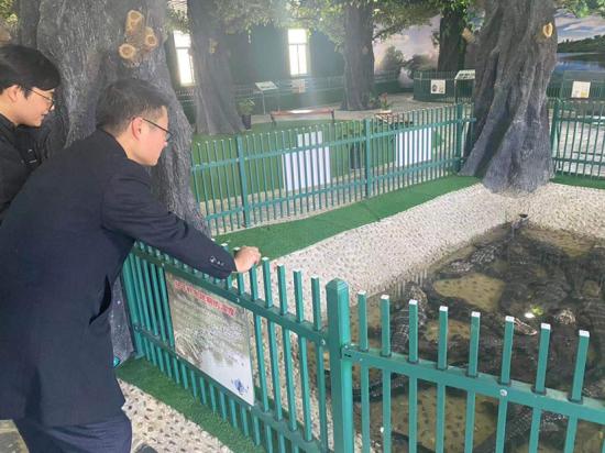 中信银行马鞍山分行客户经理在宣城扬子鳄保护基地走访了解扬子鳄保护情况