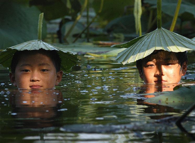 比40℃高温更火热的 是云南避暑游!