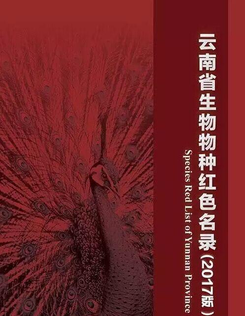 《云南生物物种红色名录》发布 野生三七已绝种 滇金丝猴成濒危物种