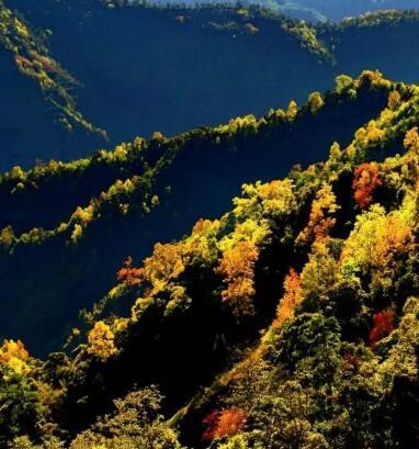 10月去这些原始秘境,寻找玉溪醉美秋色!