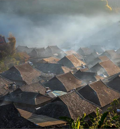16名摄影家想在世界上最大的茶园干什么?