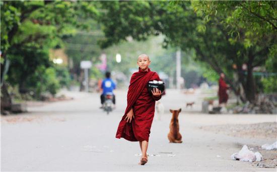 缅甸大地上最壮观的行为艺术